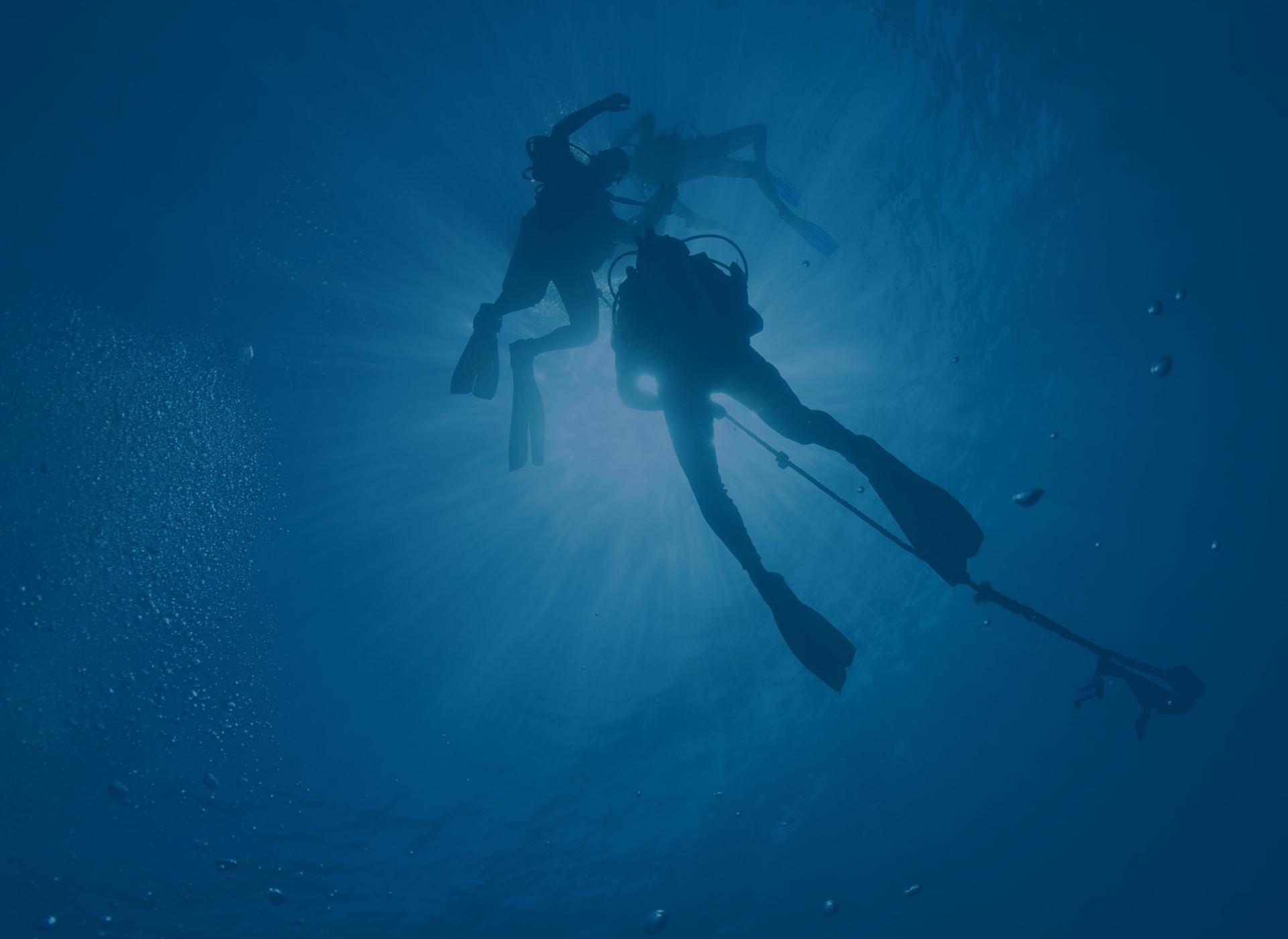 Explorez les plus beaux sites de plongée du monde !