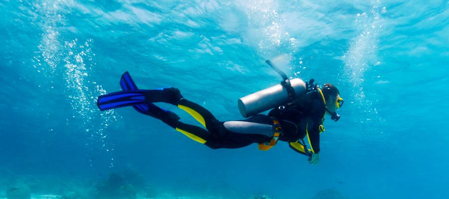 Challenge de Photos sous-marines