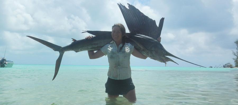 Océan Indien Seychelles