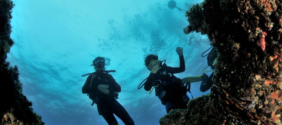Pour un tourisme durable en voyages plongée