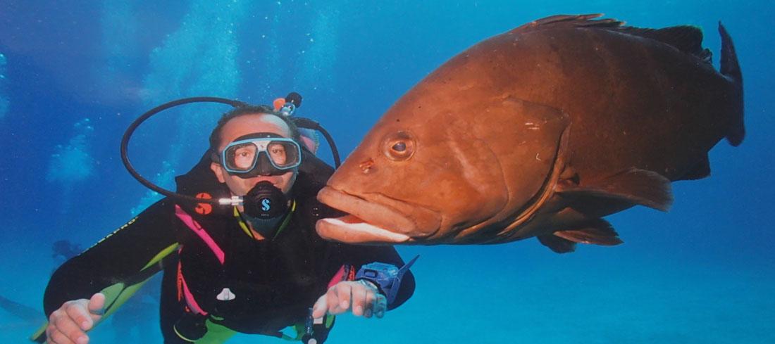 Plongée en Polynésie Francaise